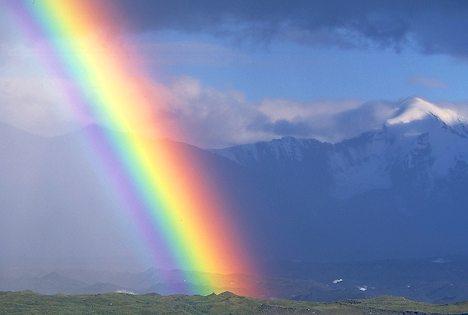 Jennifer Frisk: Väderrapport för HBTQ-himlen