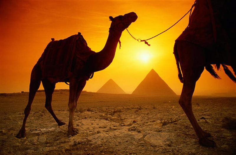Egypten: Homosexuella turister är inte välkomna